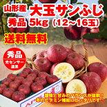 山形県産大玉ふじりんご5kg(12-16玉)