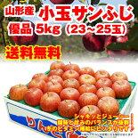 小玉サイズ山形県産サンふじりんご5kg(23-25玉入)同一住所へ2箱お届けで【送料無料】