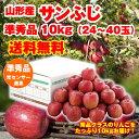 【ポイント2倍】【送料無料】山形県産「サンふじりんご」10k...