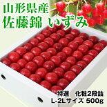 佐藤錦「特選」500g化粧詰