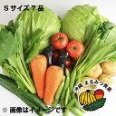 【送料無料】バイヤー厳選!!沖縄県産野菜 詰め合わせ お試し...