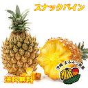【送料無料】ちぎって食べられる沖縄県産の スナックパイン 小玉2〜3個セット(約1.5kg)