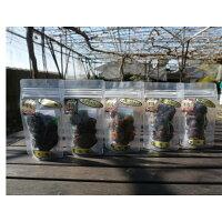セミドライぶどう(半生のブドウ)5袋セット、シャインマスカット、ナガノパープル、ジャスミン、伊豆錦、ロザリオロッソ、シナノスマイル、巨峰より5品種