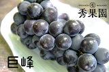 【ご家庭用】長野県産 巨峰(種有り) 2kg【訳あり】
