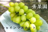 【ご家庭用】長野県産 シャインマスカット 2kg【訳あり】