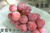 【ご家庭用】長野県産 安芸クイーン(種有り) 2kg【訳あり】
