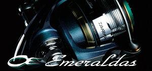 【35%OFF】ダイワ エメラルダス INF 2506W Emeraldas INF