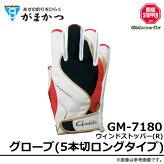 ���ޤ���/������ɥ��ȥåѡ�(R)���?��(5���ڥ������)/GM-7180