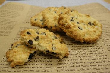 オートミールチョコチップクッキー(4〜5cmのクッキー約30〜40枚分) (レシピ付き)【5-10月夏季クール便】