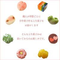 【冷凍配送】季節の上生菓子おまかせ6個セット和菓子上生菓子