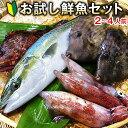【送料無料】朝獲れ鮮魚お試しセット★五島列島より活〆鮮魚を直