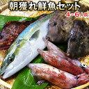 【送料無料】朝獲れ鮮魚通常セット★五島列島より活〆鮮魚を直送