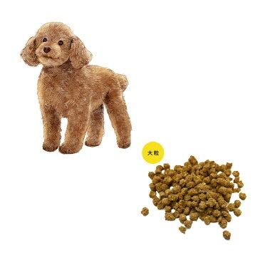 成犬用トイプードル ドッグフード 大粒 1kg/ドッグフード ドックフード ペットフード 国産 プレミアム ドライフード パピー 成犬 シニア 犬種別 トイプードル チワワ ミニチュアダックス ミックス犬 国産原材料 マルセイ