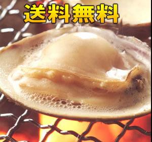 【送料無料】冷凍はまぐり5年もの5cm〜6cmサイズ 500g×4袋入(36〜40粒入)♯貝 はまぐり ハマグリ 蛤 バーベキュー 海鮮 海鮮バーベキュー 冷凍