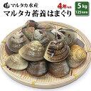 【送料無料】【業務用】大人買い蓄養はまぐり 4年もの5cm〜6cmサイズ蛤(ハマグリ)5kg(125粒前後)入♯貝 はまぐり ハマグリ 蛤 バーベキュー 海鮮 海鮮バーベキュー 直送