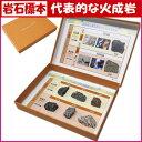 理科教材岩石標本代表的な火成岩とそのつくり6種組【あす楽】