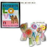 ×20【送料無料】北海道・九州・沖縄は別途送料賞味期限2017年12月ぺろぺろキャンディ飴菓子ほんの気持ちです飴5本入り×20個※取混梱包の目安:750ml瓶×2.2本分スペースが必要