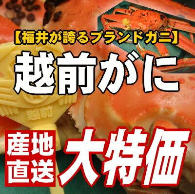 福井の味覚の王様登場!満を持してのブランドガニの販売です。こだわり抜いた極上越前ずわいがに