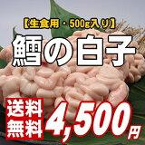【鮮度抜群!生で食べてください】ぷりぷり濃厚♪タラの白子500g【楽ギフ】【送料無料】