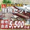 【板前も大満足の豪華版】越前旬の鮮魚詰め合わせ【魚介類】