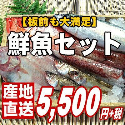 【ご贈答用の豪華版】越前旬の鮮魚詰め合わせ