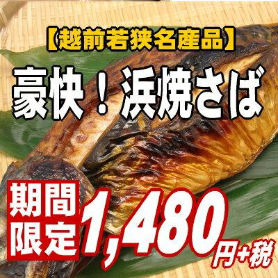 【1匹まるごと豪快焼き!】昔から伝わる福井の味♪浜焼き鯖【あす楽_関東】【楽ギフ_のし】