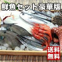 【板前ご用達の超豪華版】福井の最高級魚介類詰め合わせ