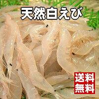 ☆富山湾の宝石☆ほのかな塩味と濃厚な甘味のある極上白えび