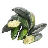 USA産 フレッシュフィンガーライム 40g / Finger Limes, 40g