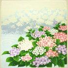 四季小ふろしき〔夏〕紫陽花