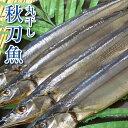 干物 丸干しサンマ 4尾 約400g 北海道 釧路産 箸を入れると柔らかくジューシーな身