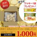 【訳あり】割れ 豆乳おからヘルシークッキーお試しセット(約67枚×1袋)【送料無料・おまけ1袋】ダイエット食品 ダイエット クッキー ヘルシー(ヘルシークッキー)