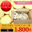 【訳あり】割れ うの花クッキー1箱(約65枚×4袋 約260枚入 約1kg)【通常商品よりも約20枚程度増量!】ダイエット食品 ダイエット クッキー プレーン(うの花クッキー)