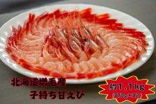 【送料全国一律500円】驚くほどの甘さ北海道増毛産子持ち甘えび1.1kg(370g×3入)