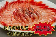 驚くほどの甘さ北海道増毛産子持ち甘エビ1.1kg(370g×3入)