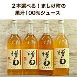 2本選べる!増毛町の果汁100%ジュース(池田果樹園)