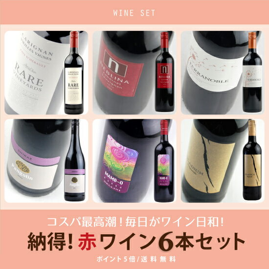 """5倍 酒宝庫MASHIMO""""世界まる呑み""""納得赤ワイン6本セット"""