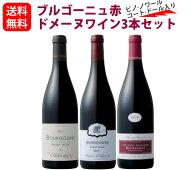 ブルゴーニュおすすめ赤ドメーヌワイン3本セット(750mlx3)コート・ドール入り