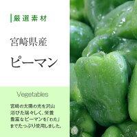 厳選素材宮崎県産ピーマンVegetables宮崎の太陽の光を沢山浴びた瑞々しく、栄養豊富なピーマンを「わた」までたっぷり使用しました。