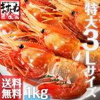 [特大3Lサイズ厳選]最高級ボタンエビ1kg(500g×2パック入)【送料無料】【レビュー高評価4.75頂きました!この感動を体験ください。】(えび/エビ/海老/ぼたんえび/ボタンエビ/刺身/海鮮丼)