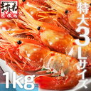 [特大3Lサイズ厳選]最高級本ボタンエビ1kg(500g×2パック入)[冷凍送料無料商品と同梱で送料無料]【この感動を体験ください。】(えび/エビ/海老/ぼたんえび/ボタンエビ/刺身/海鮮丼)