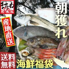 日本海のさかなは旨い!越前蟹のふるさと福井より。ますよね仲買人厳選の敦賀産の「旬・新鮮」...
