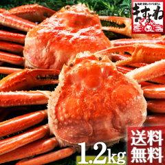 【贈答にも安心な化粧箱包装】蟹味噌まですべてを堪能するなら姿蟹![ますよね]【あす楽_年中無...