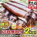 肝(キモ)醤油で食べるお刺身が絶品!日本海産お刺身用するめいか(真イカ)中型サイズ×7ハイ[...