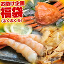 \父の日にも★カニ入り!/福井・北陸発!海鮮復興福袋 5,4...