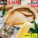 【お刺身OK】兵庫県室津産 殻付き牡蠣(冷凍)1kg前後(1...