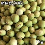 秘伝豆 (大粒) (1kg) 令和2年 山形県産 【メール便対応】