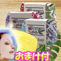 3特典【送料無料+マスク+ポイント】 ボルネオスパ ガマットソープ 3個セット (なまこ石鹸 …