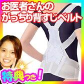 お医者さんのがっちり背すじベルト 日本製 姿勢サポート 健康サポーター 背筋サポーターベルト お医者さんがっちり背すじベルト お医者さんのがっちり背筋ベルト