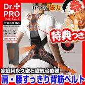 家庭用永久磁石磁気治療器 肩・腰すっきり背筋ベルト ネオジウム磁石 ネオジム磁石 肩腰すっきり背筋ベルト 磁気 背すじベルト 磁気背中ベルト